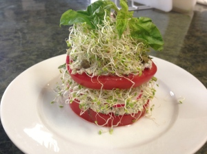 Not tuna pate-Tomato-Sprouts-Basil